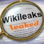 Австралийский крысолов или WikiLeaks leaked, деловой обзор о WikiLeaks