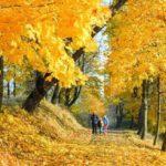 Осень – время заботы о себе